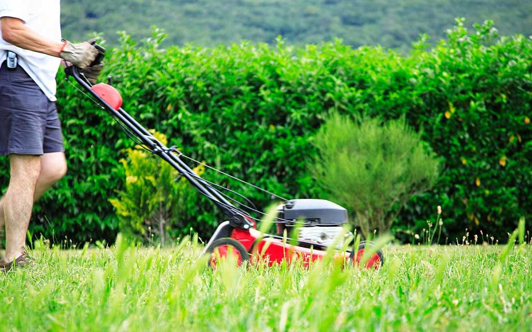 15 Best Lawn Mowers to Buy on Amazon.com 2019