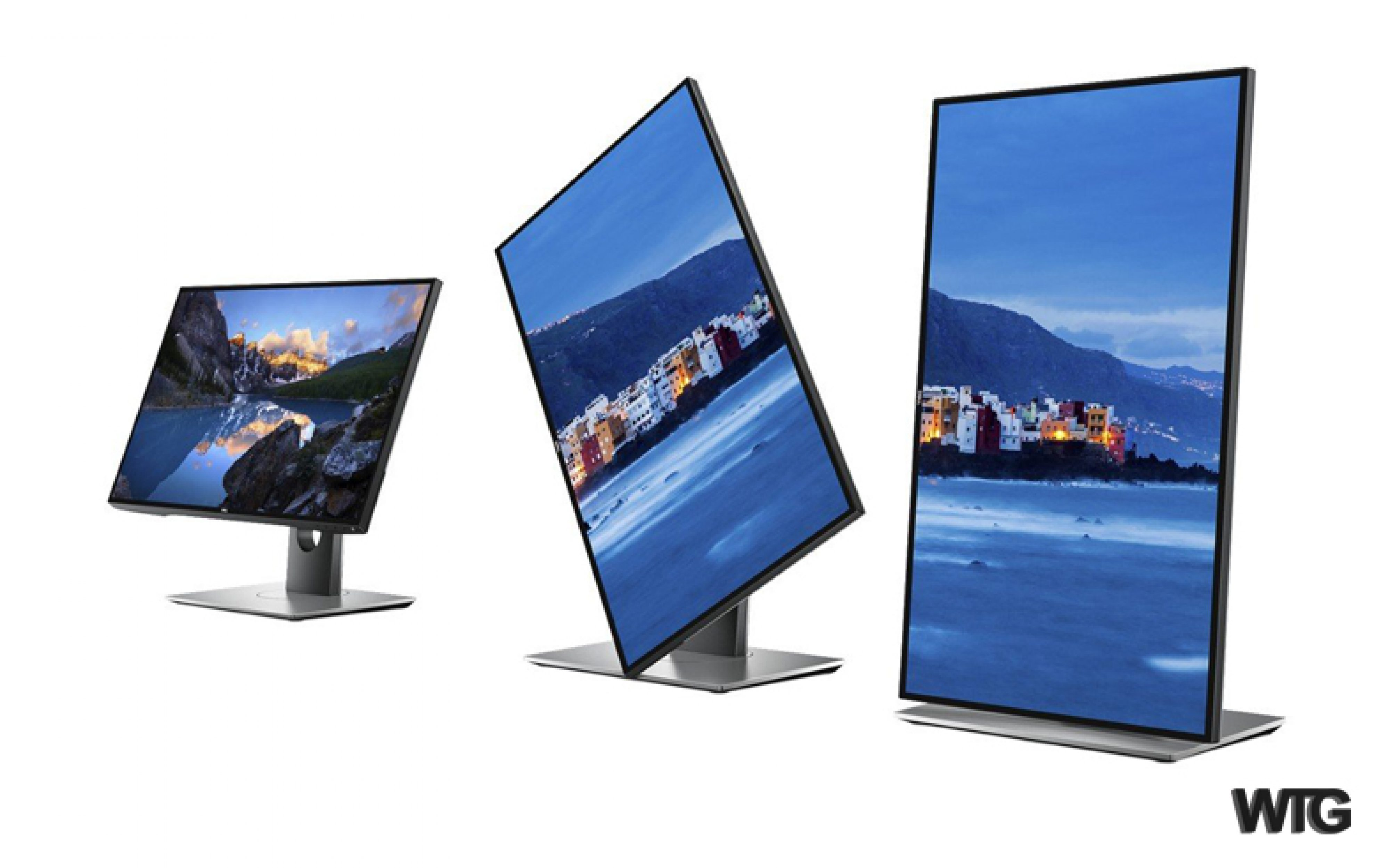 Best Vertical Monitor 2021
